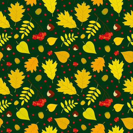 Autumn forest seamless pattern with rowan berries leaves acorn chestnut. Vector set. Dark green background. Vector