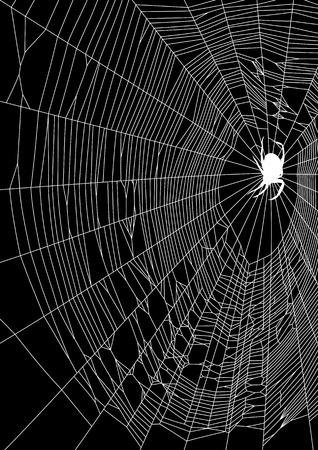 De vector illustratie van web en spin op een zwarte achtergrond Stock Illustratie