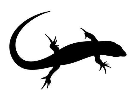 lagartija: ilustraci�n de lagarto en color negro