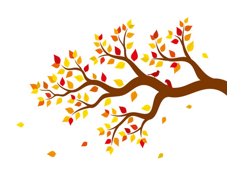 Vector illustration of autumn tree branch with colorful leaves on white background