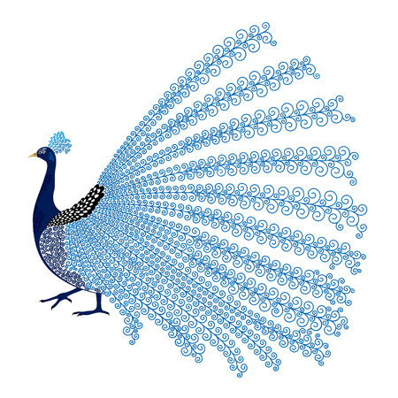 Vector illustration of stylized abstract peacock on white background Ilustração