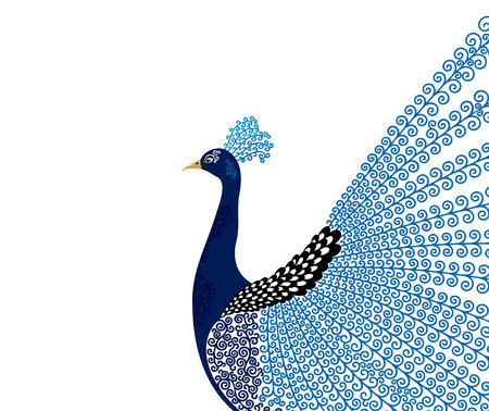 peacock: Abstract stylized peacock greeting card. Invitation. Vector illustration