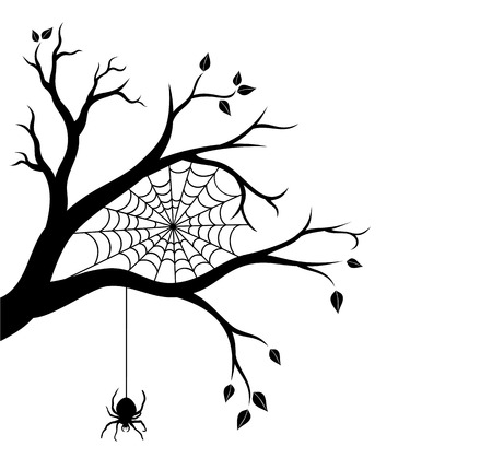 Halloween tree branch and spider web. Vector illustration. Illustration