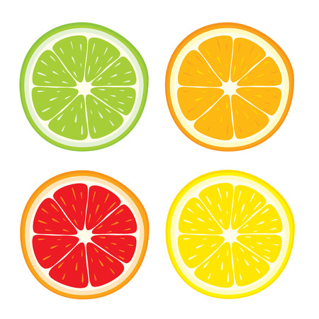 Vector set of lemon, orange, lime, grapefruit slices on white background.