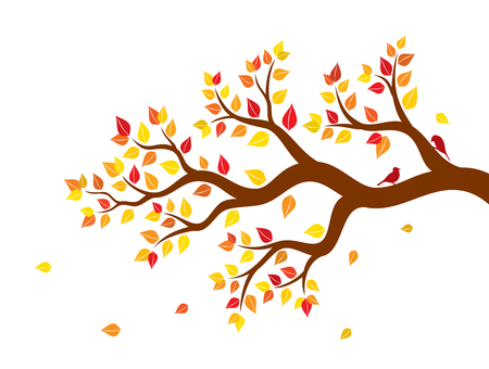two birds: Vector illustration of autumn tree branch with colorful leaves and two birds on white background