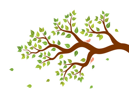 birds in tree: Vector illustration of tree branch with green leaves and two birds on white background. Wall sticker.