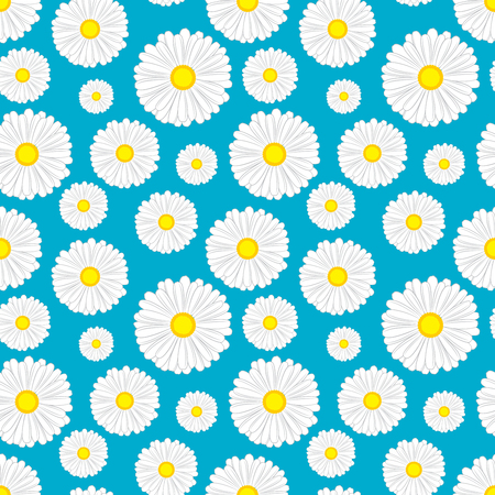 chamomiles: Floral seamless pattern with chamomiles on blue background. illustration