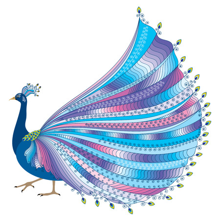 luxurious: illustration of stylized abstract peacock with luxurious tail on white background