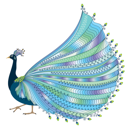 opulent: illustration of stylized abstract peacock with luxurious tail on white background