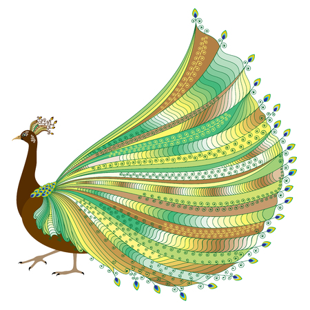 crown tail: illustration of stylized abstract peacock with luxurious tail on white background