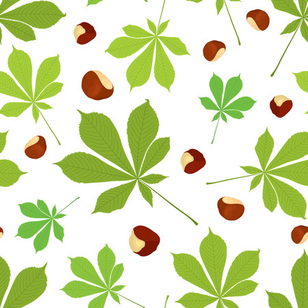 Vector seamless pattern of chestnut leaves and nuts in color on white background. Cover design. Ilustrace