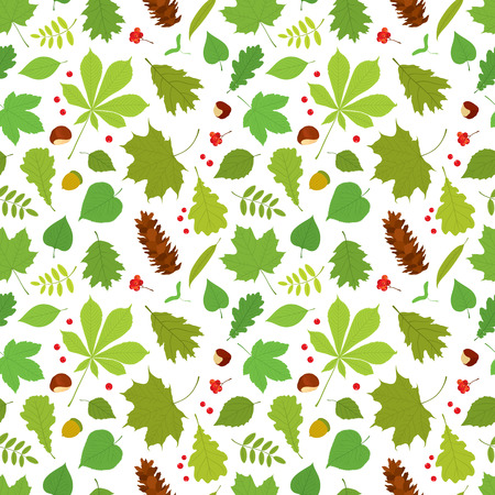linden tree: Seamless pattern of different tree leaves - oak, chestnut, birch, Rowan, linden, jasmine, lilac, maple, willow, poplar, sycamore, Rowan berries, acorns, pine cone, nuts on white background. Illustration
