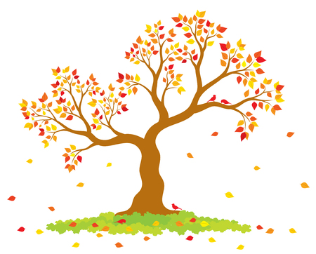 Vector illustration of autumn tree with yellow, red, orange leaves and birds on white background.
