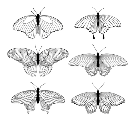 Vector set of decorated outline butterflies