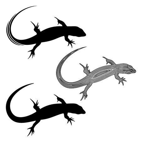 Vector illustration of decorated lizard and lizards silhouette 일러스트