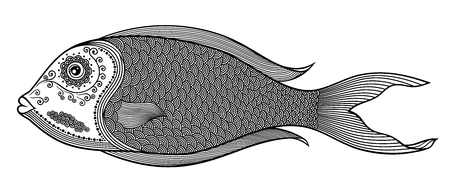 Vector illustration of isolated, stylized doodle fish 일러스트