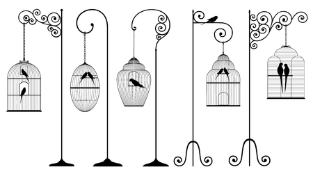 Vector set of hanging bird cages and domestic birds