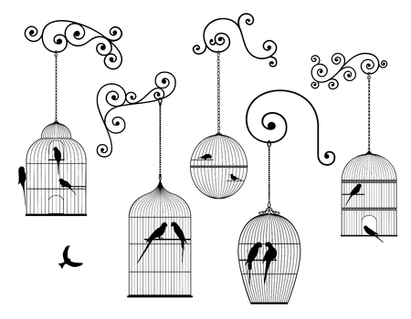Vector set of antique birds hanging bird cages and domestic birds