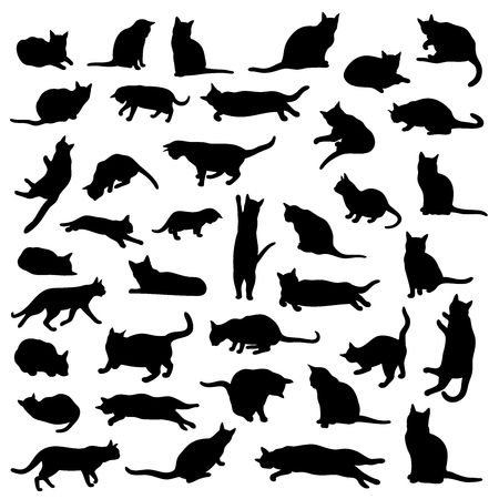 Vector set of isolated cat silhouettes and various poses Çizim