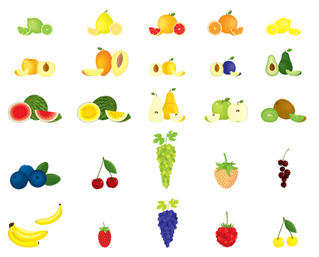 Vector set of isolated fruits and berries 일러스트