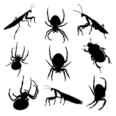 Vector set of various insects, isolated 일러스트