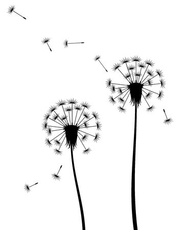 Vector illustration of silhouette of dandelions with flying seeds