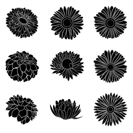 Vector set of detailed, realistic various flower bud silhouettes in black color, isolated 일러스트