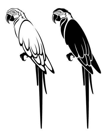 Vector set of decorative, detailed, isolated, sitting parrots in black color, on white background. Outline and silhouette.