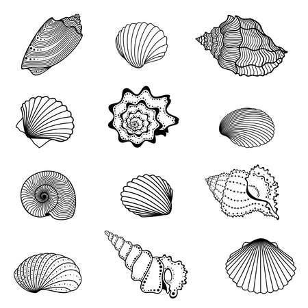 Vector set of abstract, decorative, outline seashells in black color, isolated, on white background.