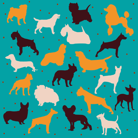 pembroke: dog breeds collection multicolor