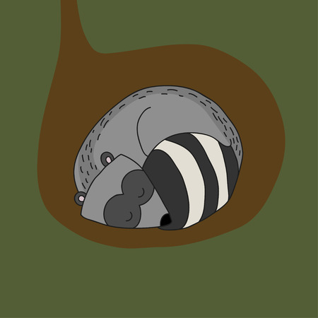 burrow: illustration sleeping raccoon in a hole Illustration