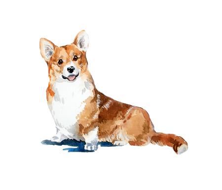 水彩手描き色明るいコーギー カード。動物の水彩画の概念 写真素材