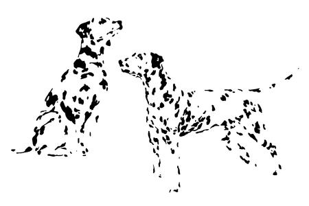 Un conjunto de dibujos de perro adulto dálmata. Patrón de manchas y puntos. Dibujo a mano boceto. Tinta, pincel. Siluetas de perros sobre un fondo blanco. Desarrollar imaginacion