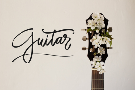 Part of a guitar on a white background with several cherry blossoms. Concept of music, hobby, creativity Stok Fotoğraf