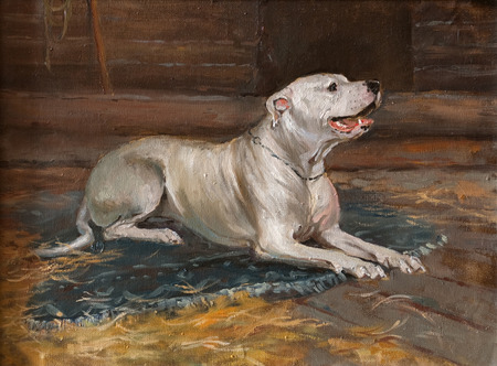 oil painting portrait of hunting white dog in the shed. Art concept Stock Photo