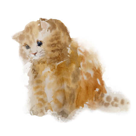 Cute colorfull red kitten isolated on white background. Watercolor. Watercolor concept. Animal concept