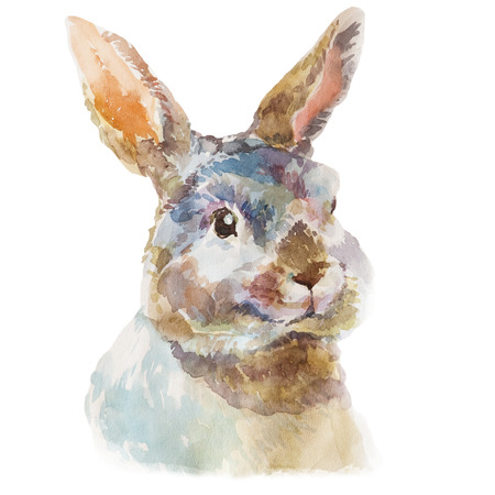 Cute watercolor hand drawn little fluffy rabbit. Rural pet isolated on white background.