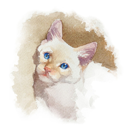 Cute colorfull siberian kitten isolated on white background. Portrait. Watercolor concept. Animal concept