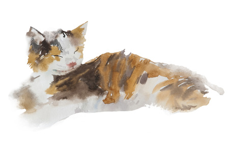 Cute colorfull sleeping cat isolated on white background. Watercolor. Watercolor concept. Animal concept Stock fotó - 88756849