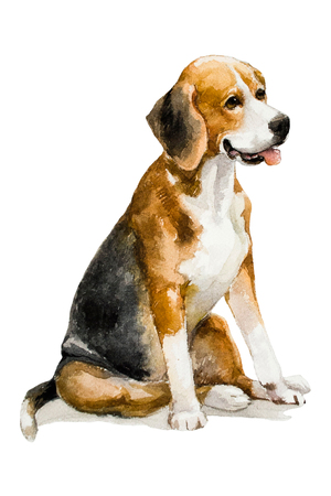 Watercolor artistic dog portrait isolated on white background. Cute pet animal hand drawn. Animal concept. Watercolor concept.