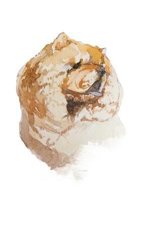 Portrait de chien artistique aquarelle isolé sur fond blanc. Animal mignon animal dessiné à la main. Concept de l'animal. Concept aquarelle. Banque d'images - 89447292