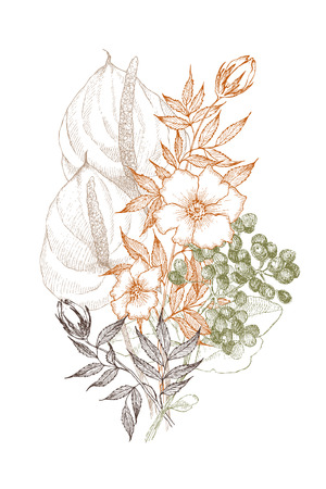 ヴィンテージ植物イラストの花。花のコンセプト。ボタニカのコンセプト。ベクトルデザイン。  イラスト・ベクター素材