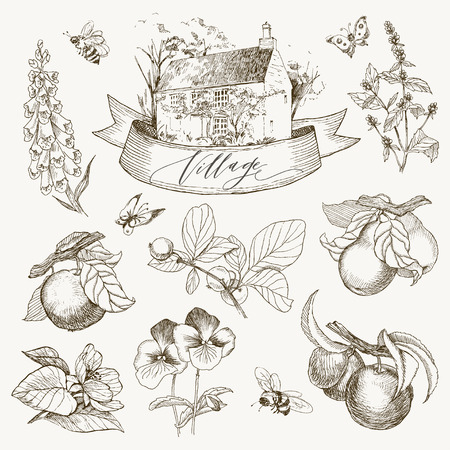 Set of farmhouse and garden flowers and fruits illustration.