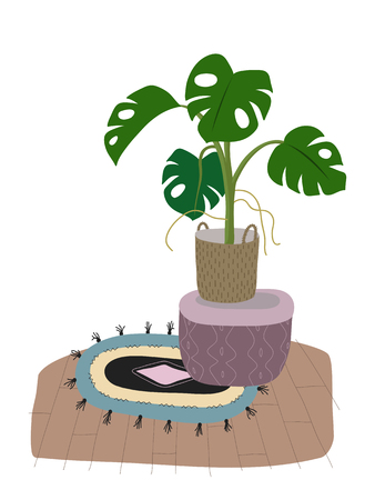 A potted monstera plant isolated on white. A green home decorative flower in pot. Hand drawn flat cartoon illustration. Icon isolated on white. Vector