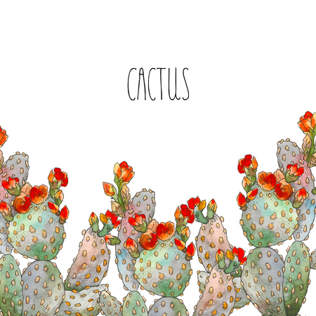 Watercolor border botanical illustration cactus, isolated object, tropics Standard-Bild - 98706442