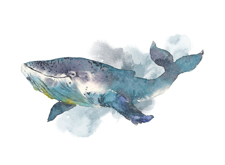 Whale. Sea animal. Watercolor Hand-painted Illustration Isolated on white background Stock fotó - 98891968