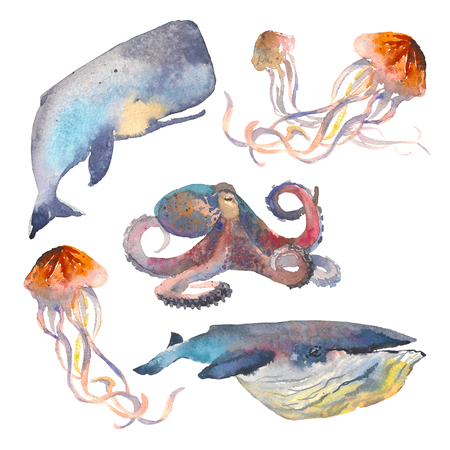 Watercolor sea animals set. Nautical illustration of whale, jellyfish, octopus.
