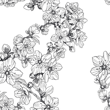 Blooming tree Hand drawn botanical blossom branches on white background. Vector illustration. Stock Illustratie