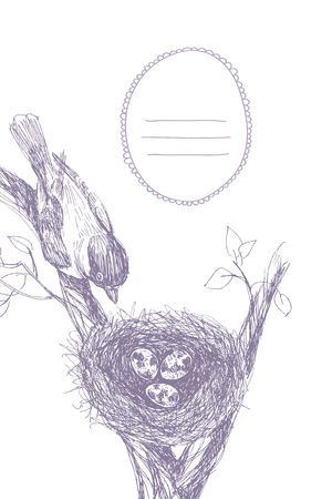 Bird nest. Robin nest, eggs and feathers. hand drawn in Illustrator with charcoal brushes to create an effect of pencil drawing.