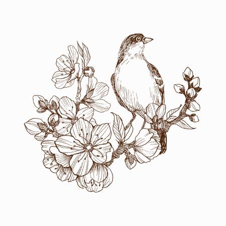 Ilustración de vector de pájaro dibujado a mano en brunch floreciente. Estilo gráfico, hermosa ilustración. Grabado de estilo retro